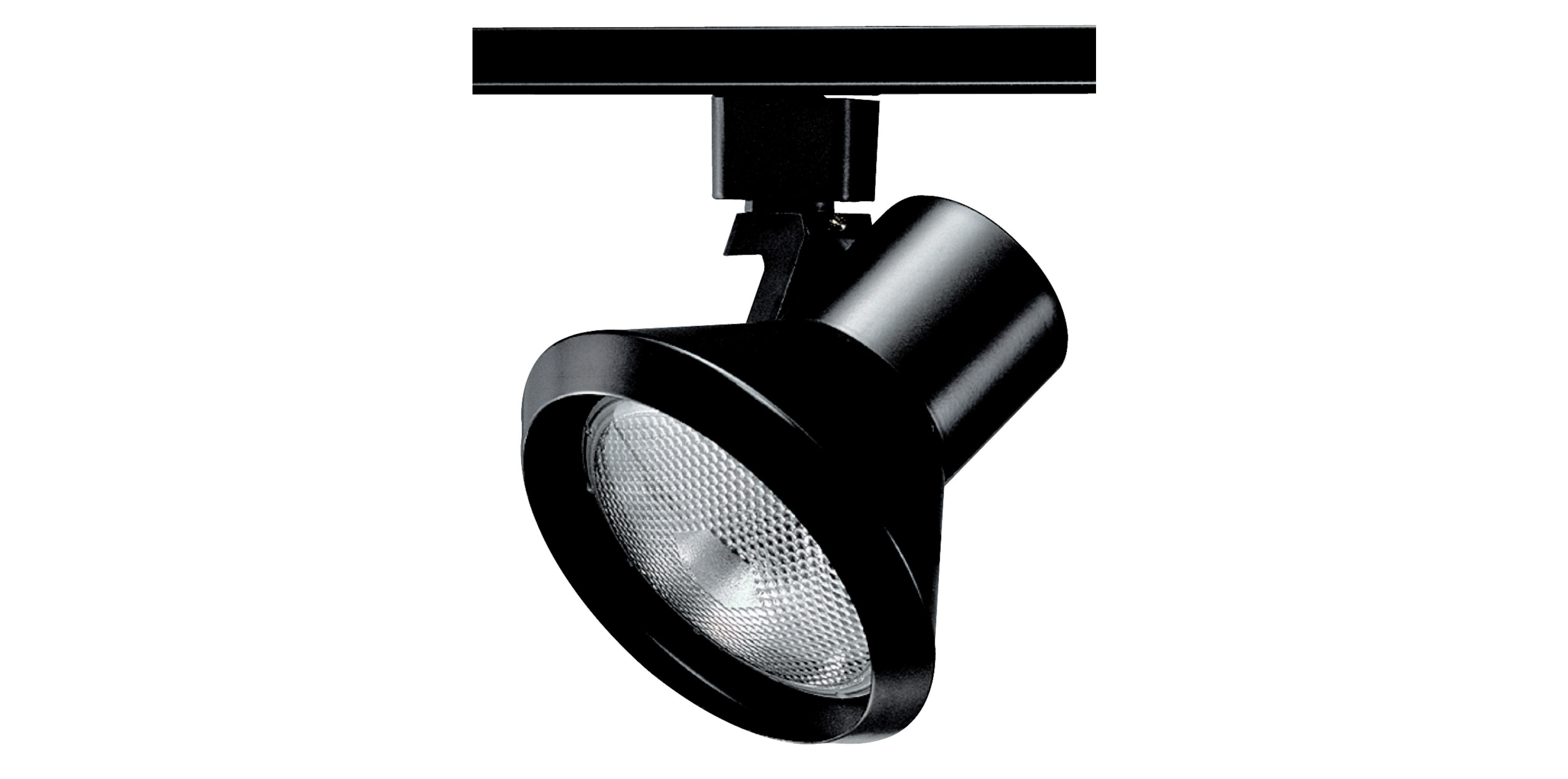 Discontinued Line Voltage Track Head Rp Lighting Fans